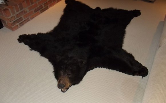 Black Bear Skin Rugs