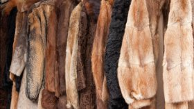 Does Wearing Vintage Fur Instead of New Fur Make You a Better Person?