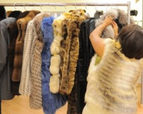 Fur selection for a coat or vest