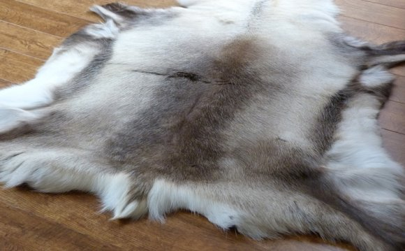 White Animal Skin Rugs