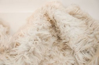 Rinse and drain the sheepskin rug to clean