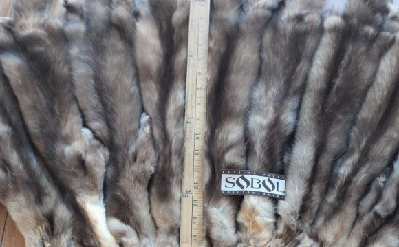 Sable Fur Jackets