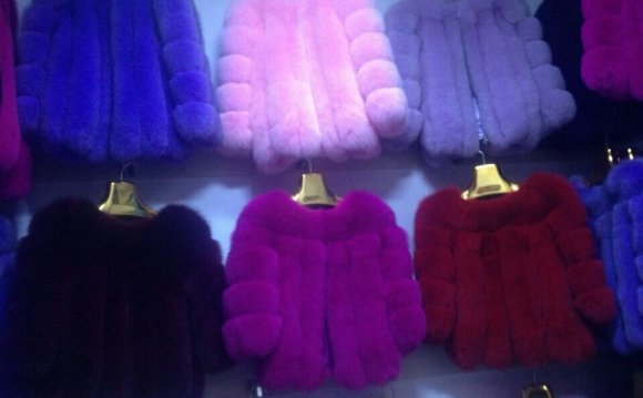 Winter Fur Coats for Women