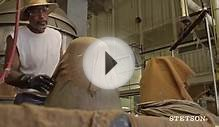 Stetson: The Making of a Legend - Dress Hat